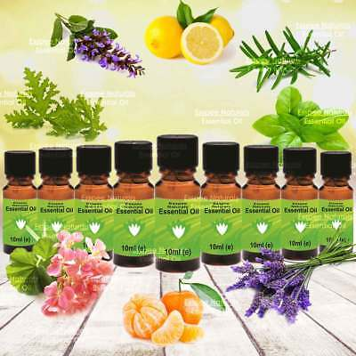 ESSENTIAL OILS - 9x10ml Popular Aromatherapy Set 2 - 100% Pure in Glass Bottles