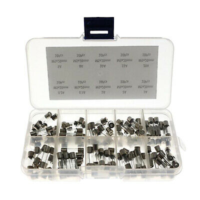 5X20 5V 1A Fast-Blow Cartridge Glass Fuses with Plastic Box 100pcs with Storage