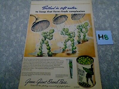 Vintage Pillsbury Green Giant Magazine Ad Suitable for Framing H8 SOFT WATER PEA