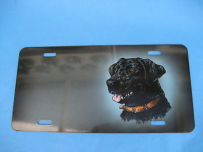 Dog Picture   Novelty Plate  (Pk149)