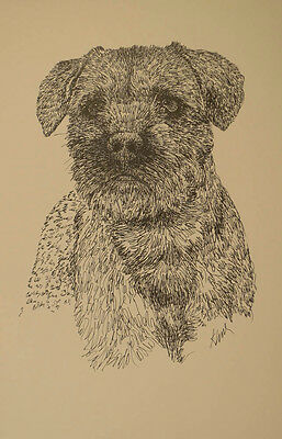 Border Terrier Dog Art Portrait Print #30 Kline adds dog name free. WORD DRAWING