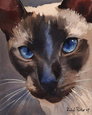 Giclee PRINT Siamese Cat Art Watercolor Painting Chocolate Seal Point custom