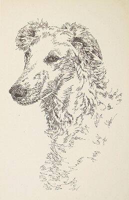 BORZOI RUSSIAN WOLFHOUND ART Kline WORD DRAWING #31