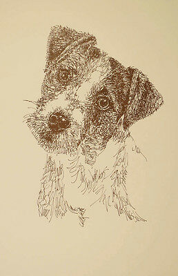 JACK RUSSELL TERRIER DOG ART PORTRAIT PRINT #237 Kline adds dogs name free ROUGH