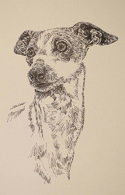ITALIAN GREYHOUND DOG PRINT #236 Drawn from words KLINE ADDS YOUR DOGS NAME FREE