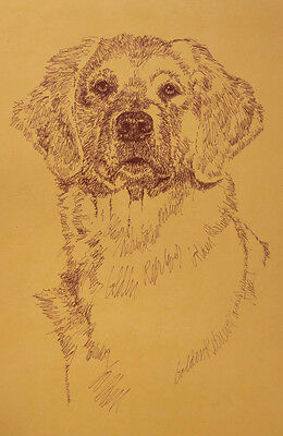 GOLDEN RETRIEVER DOG ART PORTRAIT #237 Kline adds your dogs name free. GIFT