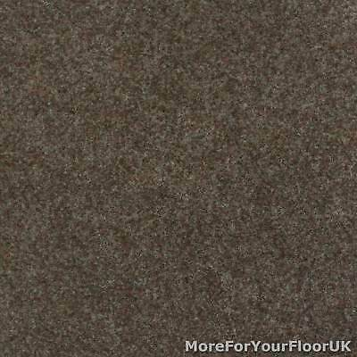 Brown Contract Velour Gel Backed Carpet, Office Kitchen