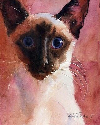 "Giclee PRINT Siamese Cat Art Watercolor Painting /""Stand/"" chocolate seal point"