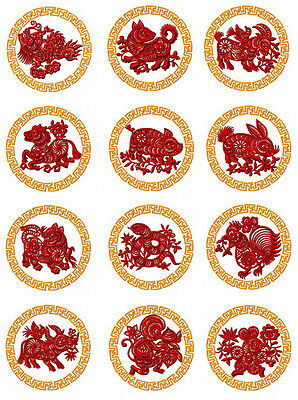 "ABC Designs Freestyle Cyclamens Machine Embroidery Designs SET for 5/""x7/"" hoop"
