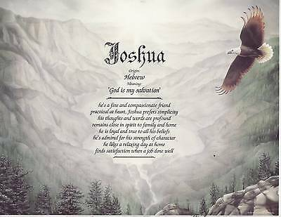 EAGLE VALLEY Print Personalized Name Meaning Poem New