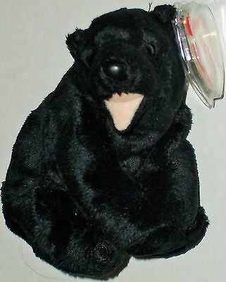 Ty Beanie Babies 2000 Cinders the Bear - 6th Gen Hang Tag - 9th Gen Tush Tag