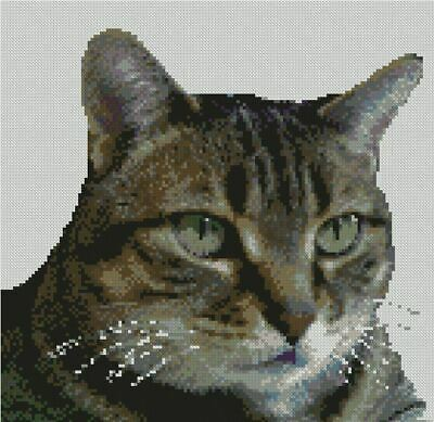Tabby Cat 1 Complete Counted Cross Stitch Kit 14 Count