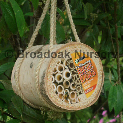 POLLINATING BEE LOG Nest Box for Solitary, Mason Bees