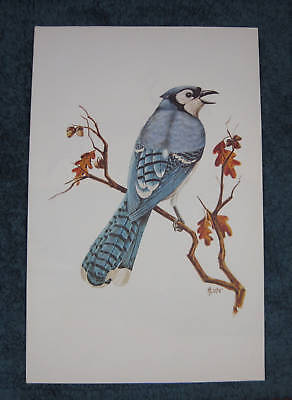 """Blue Jay"" 11""x17"" Water Color w/ matching 1 troy oz. .999 Silver Ingot"