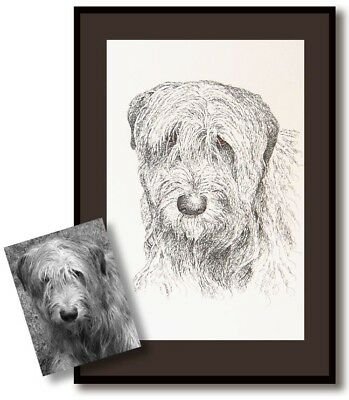 Original dog or animal drawing by Stephen Kline - Drawn only with the pet's name