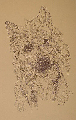 Australian Terrier Dog Art Lithograph #53 Kline adds your dogs name free. AUSSIE