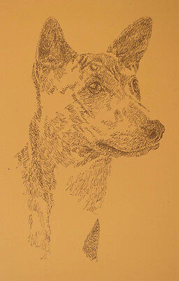 Basenji Dog Art Signed Print Lithograph #56 Kline adds your dogs name free. GIFT