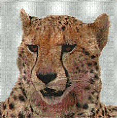 """Cow Head 1 Counted Cross Stitch Kit 9.5/"""" x 8/"""" A2217"""