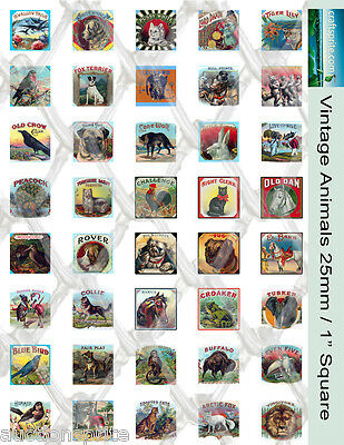 "40 Vintage Animals 1"" Square Collage Paper 8.5"" x 11"" - For Glass Tile Pendants"