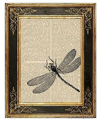 Dragonfly Art Print on Vintage Book Page Home Garden Office Hanging Decor Gifts