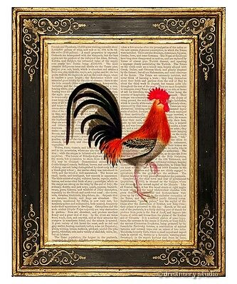 Rooster #2 Art Print on Antique Book Page Vintage Illustration Farm Chicken Bird
