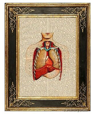 Internal Organs Art Print on Antique Book Page Vintage Illust Medical Anatomy