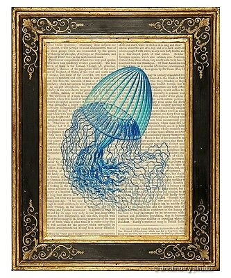 Jellyfish Art Print on Vintage Book Page Leptomedusae #1 Home Office Ocean Decor