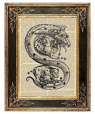 Draco The Dragon #2 Art Print on Antique Book Page Vintage Illust Constellation