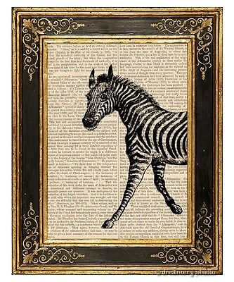 Zebra 1 Art Print on Antique Book Page Vintage Illustration African Wild Stripes