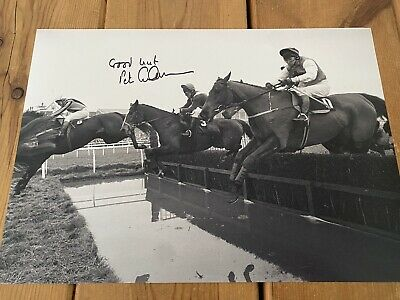 Peter Scudamore Horse Racing Signed 16x12 Photo PROOF