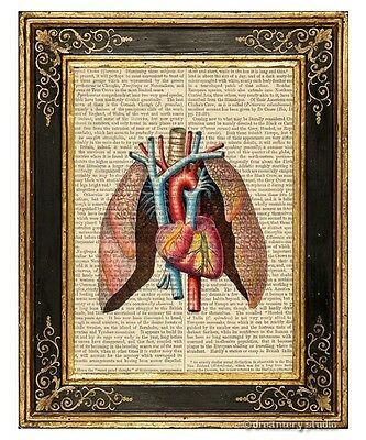 Heart & Lungs Art Print on Antique Book Page Vintage Medical Illustration