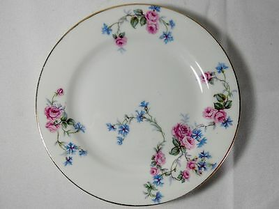Limoges France LIM10 Bread and Butter Plate(s)