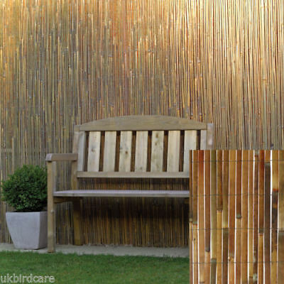 2m TALL X 12m LONG SPLIT BAMBOO SCREENING FOR PRIVACY WINDBREAK FENCING etc.