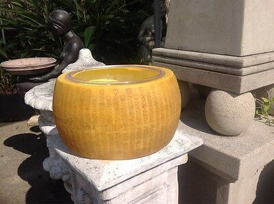 Faux Parmigiano-Reggiano Italian Cheese with bowl inset.