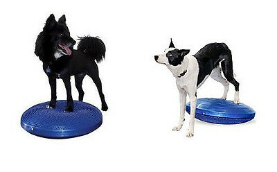 "Core Stability Balance Fitness  Strengthen Disc For Dogs 24""  8003DOG"