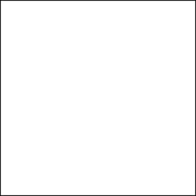 BL (Blink) Lash Primer 50ml  - 1, 2, 4 or 5 bottles - Eyelash Extension