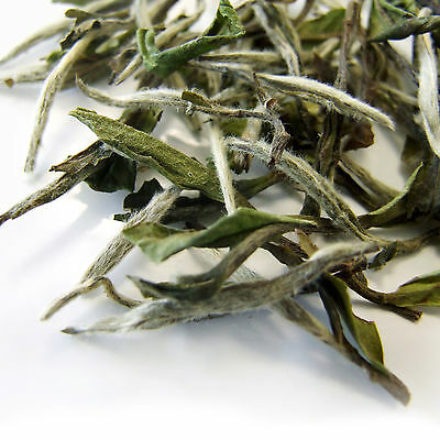 White Peony Supreme ( Pai Mu Tan / Bai Mu Dan ) Chinese White Loose Leaf Tea