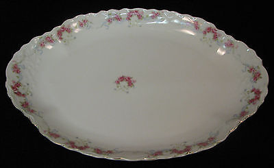 L Straus & Sons Carlsbad Austria 14 inch oval platter pink & white flowers