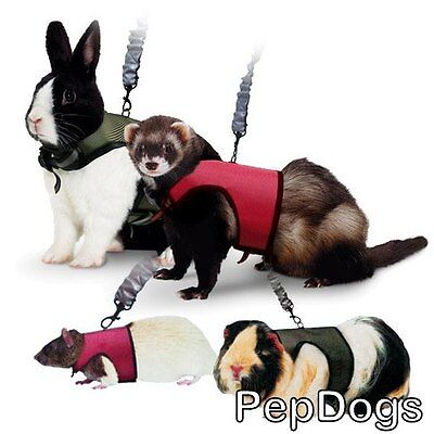SUPER PET Nylon Comfort Harness plus Stretchy Leash for Small Animal Travel Walk
