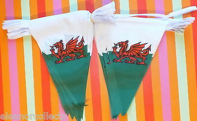 Welsh Triangle Bunting 20 metre Cymru/Wales Rugby Football Fete Garden Party bn