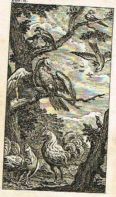 "Mr. Gay's Fables -1757- ""The Vulture, The Sparrow and Other Birds"" FABLE # TWO"
