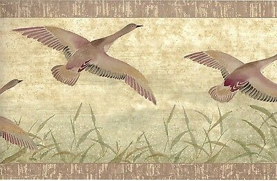 ~1 Roll Wallpaper Border ~ Nature Geese, Goose in Flight ~Country Decor 5 yards
