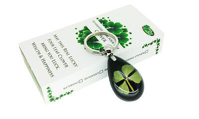 Celtic Lucky Real 4 Four Leaf Clover Good Luck Keyring with Gift Box & Guarantee