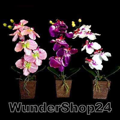orchidee kunstblumen seidenblumen 40cm kunstpflanzen. Black Bedroom Furniture Sets. Home Design Ideas