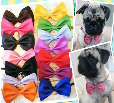 20 pcs small Pet Dog Cat Puppy Solid PreTied neck Bow Tie Groomer Wholesale lot