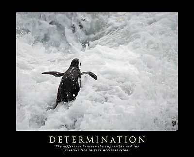 A1 Size Determination Motivational Inspirational Quote Word Artwork Print Poster