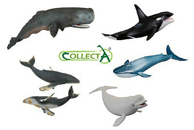 *new* Whale Models - Collecta - Sperm+Killer+Humpback+Blue+Beluga+Pilot+Bowhead