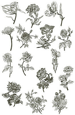"ABC Designs Nocturnal Flowers Machine Embroidery Designs SET 5""x7"" hoop"