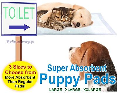 Dog Pads Puppy Toilet Training Mat System Cat For Pet Trainer Training Big Small