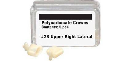 Polycarbonate Crowns #23 Upper Right Lateral - Box of 5 Crown Form